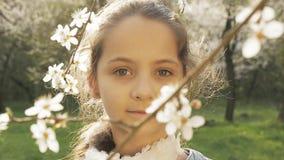 Glückliche Kinder, fallender Blumenblatt-Baum stock footage