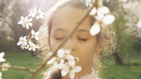 Glückliche Kinder, fallender Blumenblatt-Baum stock video
