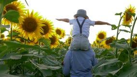 Glückliche Kindheit, das Kind hebt Hände Flug auf dem Sonnenblumenfeld nachahmend an, das auf dem Hals der Schwester im Sonnenlic stock footage