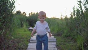 Glückliche Kindheit, süßes Baby, das auf barfüßigfreien der Holzbrücke unter hohen Schilfen geht stock footage