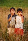 Glückliche kleine Kinder im Gras Stockfotos