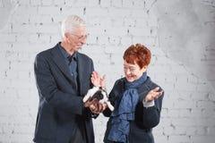 Glückliche lächelnde alte Paare, die zusammen mit Haustierkaninchen auf weißem Ziegelsteinhintergrund stehen Lizenzfreie Stockbilder