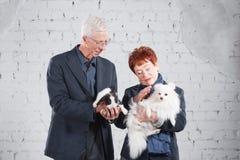 Glückliche lächelnde alte Paare, die zusammen mit Haustierkaninchen und -hund auf weißem Ziegelsteinhintergrund stehen Lizenzfreie Stockfotos