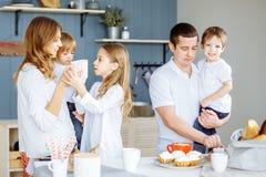 Glückliche lächelnde kaukasische Familie, die Frühstück in der Küche zubereitet stockfotos