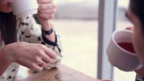 Glückliche liebevolle Paare in trinkendem Tee des Cafés Erstes Datum stock video footage