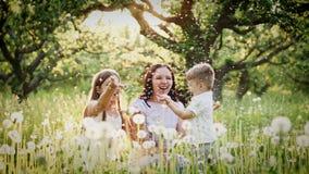Glückliche Mutter und Kinder, die mit Löwenzahn spielen stock video