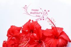glückliche Muttertagesgrußkarte mit Blume Stockfotografie
