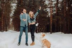 Glückliche nette lächelnde Paare von jungen Leuten in den Denimklagen im schneebedeckten Wald im Winter mit rotem Hund border col stockfotos