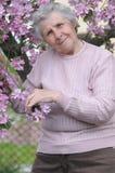 Glückliche Oma Stockfotografie