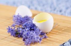 Glückliche Ostern-Dekoration mit Frühlingsblumen und Eierschale auf einer gelben Auflage Lizenzfreie Stockbilder