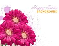 Glückliche Ostern-Gänseblümchenblumenblumenstraußkarte Pinkfarbene Farben der Frühlingsblumenschönheit lizenzfreie abbildung
