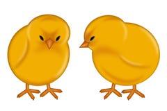 Glückliche Ostern-Tagesschätzchen-Küken Stockfoto