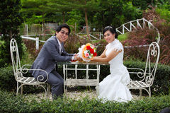 Glückliche Paare am Banketttisch auf Feld Lizenzfreie Stockfotos