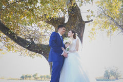 Glückliche Paare in der Weinlesekleidung Stockfotografie