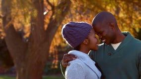 Glückliche Paare, die Spaß zusammen haben stock video footage