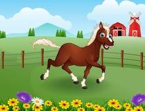 Glückliche Pferdekarikatur im Bauernhof mit grünem Feld stock abbildung