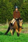 Glückliche Pferderueckenreitpaare Stockfoto