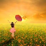 Glückliche Regenschirmfrau, die in Blumengarten und -sonnenuntergang springt Lizenzfreie Stockbilder