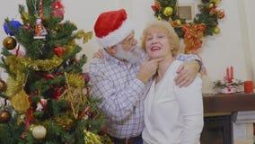 Glückliche reife Paare verzieren Weihnachtsbaum stock video footage