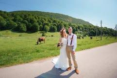 Glückliche schöne Braut und Bräutigam, die im Sonnenlicht auf Feld geht Stockbilder