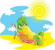 Glückliche Schildkröte auf dem Strand Stockfotos