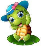 Glückliche Schildkröte mit blauer Kappe auf dem Lotosblatt Stockfoto