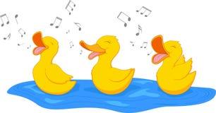 Glückliche singende Ente Stockfotos
