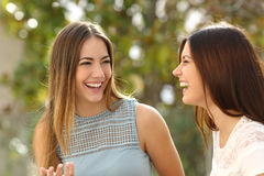 Glückliche sprechende und lachende Frauen Stockbilder