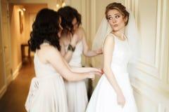 Glückliche stilvolle herrliche blonde Braut mit Brautjungfern auf dem BAC Stockfotografie