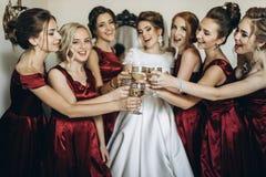Glückliche stilvolle herrliche blonde Braut mit Brautjungfern auf der Rückseite Lizenzfreie Stockfotos