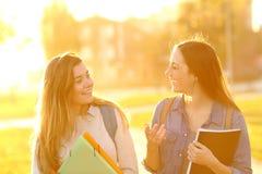 Glückliche Studenten, die bei Sonnenuntergang in einem Park gehen und sprechen stockbilder