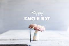 Glückliche Tag der Erde-Karte Stockfotografie