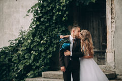 Glückliche umarmende und lächelnde Hochzeitspaare auf den herrlichen Anlagen des Hintergrundes im Schloss Lizenzfreie Stockfotos