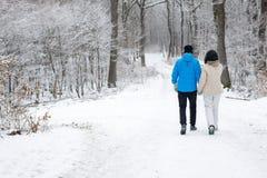 Glückliche unerkennbare ältere Paare, die in einen Winterwald exp gehen lizenzfreie stockfotografie