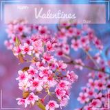 Glückliche Valentinsgruß-Tagesbeschriftung mit Kirschblüte-Blumenhintergrund Stockfotografie