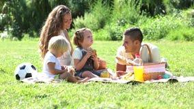 Glückliche vierköpfige Familie auf Picknick stock video