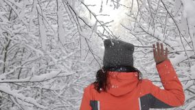 Glückliche Wintertagesfrau, die im Wald weißer schneebedeckter Waldrührende Niederlassung von Bäumen, Schnee fällt von ihnen geht stock video