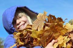 Glücklicher Armful Blätter Stockfoto