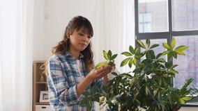 Glücklicher asiatischer Frauenreinigung Houseplant zu Hause stock video footage