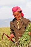 Glücklicher asiatischer weiblicher Landarbeiter Lizenzfreie Stockbilder