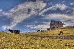 Glücklicher Bauernhof Lizenzfreies Stockbild