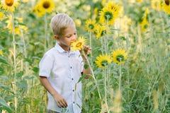 Glücklicher blonder Junge in einem Hemd auf Sonnenblumenfeld draußen Lebensstil, Sommerzeit, wirkliche Gefühle Lizenzfreies Stockbild