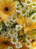 Glücklicher Blumenstrauß Stockfoto