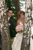 Glücklicher Bräutigam und die Braut Lizenzfreies Stockfoto