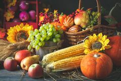 Glücklicher Danksagungs-Tageshintergrund, -Holztisch verziert mit Kürbisen, -mais, -früchte und -Herbstlaub ernte lizenzfreie stockfotos