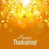 Glücklicher Danksagungs-Tageshintergrund mit glänzendem Stockfoto