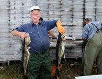 Glücklicher Fischer mit Kabeljau Stockfoto