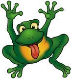 Glücklicher Frosch Stockfotografie