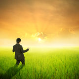 Glücklicher Geschäftsmann auf dem grünem Reisgebiet und -sonnenuntergang für Erfolg Stockfoto