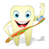 Glücklicher gesunder Zahn mit Zahnbürste Stockfotos